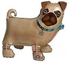 Pug Air Walker